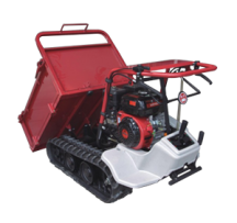 mini-site-dumper-003-s